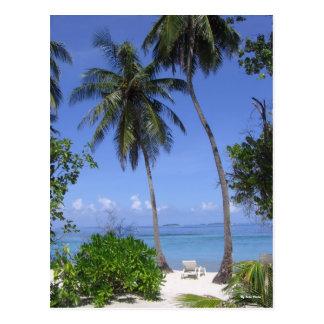 Tropical Beach Postcard