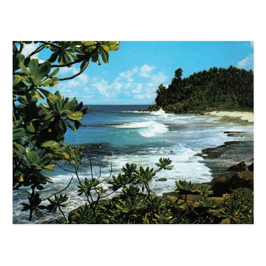 Tropical beach postcard