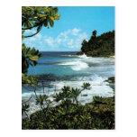 Tropical beach postcards