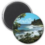 Tropical beach refrigerator magnets