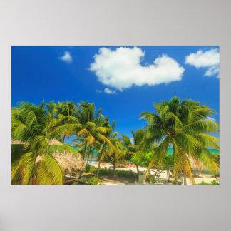 Tropical beach resort, Belize Poster