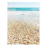 Tropical Beach Sand Ocean Waves Sea Shells Florida Postcard