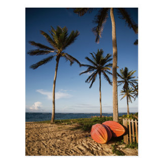 Tropical Beach Scene Postcard
