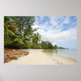 Tropical Beach, Seychelles Posters