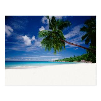 Tropical Beach | Seychelles Postcard