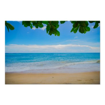 Beach Themed Tropical Beach Sun Sand and Sea Poster
