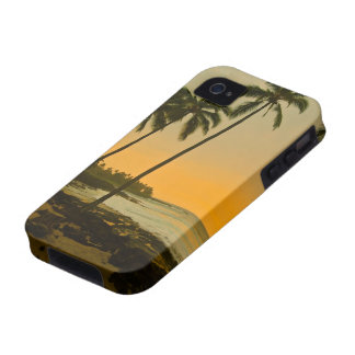 Tropical Beach Sunset Case For The iPhone 4