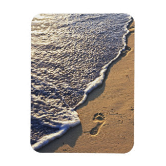 Tropical beach with footprints magnets