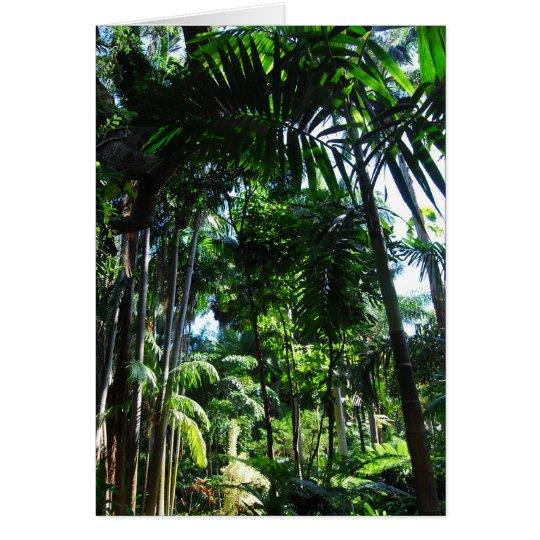 Tropical Beauty Card
