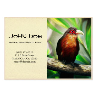Tropical Bird cool colourful exotic painting Business Cards