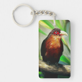 Tropical Bird cool colourful exotic painting Keychain