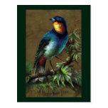 Tropical Bird Happy New Year Postcard