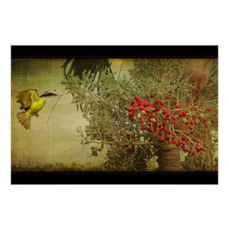 Tropical Bird Nesting in Christmas Palm Tree Poster