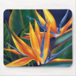 Tropical Bird of Paradise Mousepad