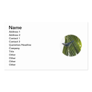 Tropical Bird Picture on Palm Tree Business Card
