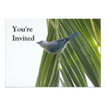 """Tropical Bird Picture on Palm Tree 5"""" X 7"""" Invitation Card"""