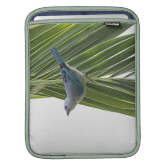 Tropical Bird Picture on Palm Tree Sleeve For iPads