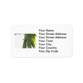 Tropical Bird Picture on Palm Tree Label