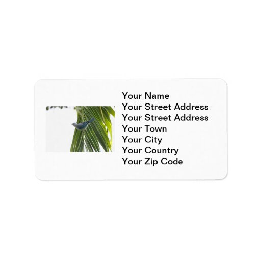 Tropical Bird Picture on Palm Tree Personalized Address Label