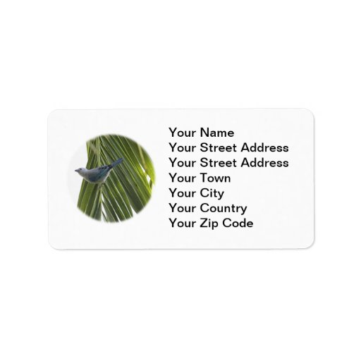 Tropical Bird Picture on Palm Tree Personalized Address Labels