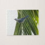 Tropical Bird Picture on Palm Tree Puzzle