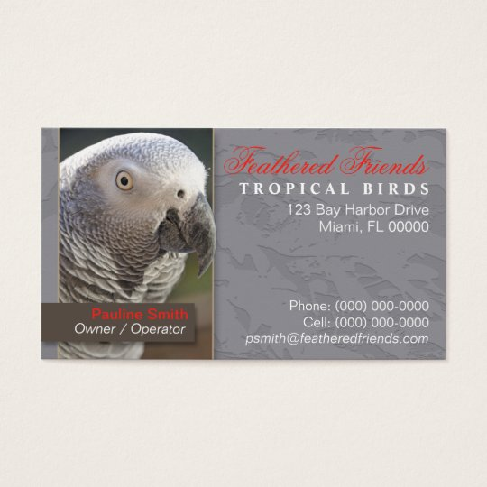 Tropical Birds Business Card