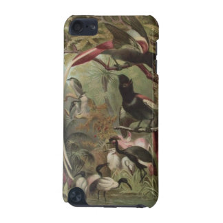 Tropical Birds MP3 Case For iPod Touch 5G