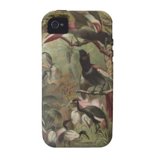 Tropical Birds Phone Case For iPhone 4/4S Case For The iPhone 4