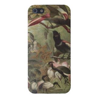 Tropical Birds Phone Case For iPhone 5/5S