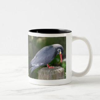Tropical Black Beauty Mug