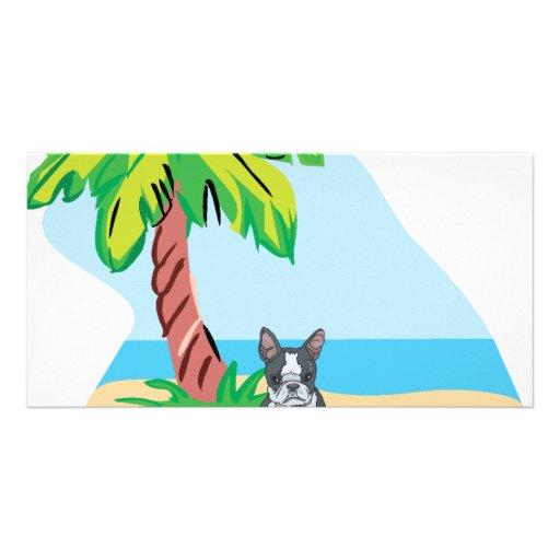 Tropical Boston Terrier Photo Card