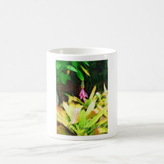 Tropical Bromeliad - Walk in the Garden Coffee Mug