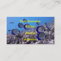 Tropical Butterfly Fish Business Card