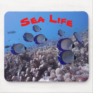 Tropical Butterfly Fish Mouse Pad