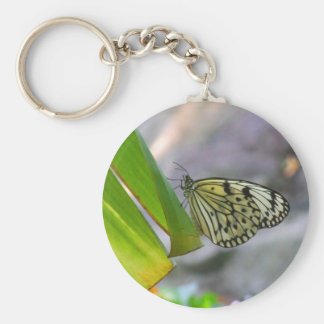 tropical butterfly keychain