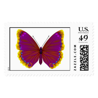 Tropical butterfly stamps