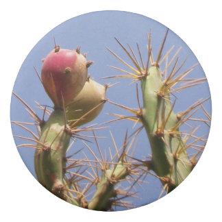 Tropical Cactus Biological Blue Skies Eraser