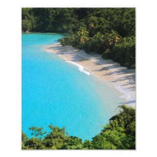 Tropical Caribbean Island Beach Photograph