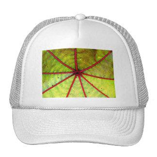 Tropical Castor Leaf Structure Trucker Hat