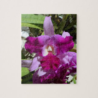 Tropical Cattleya Orchid Flower Puzzles