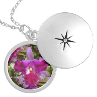 Tropical Cattleya Orchid Flower Silver Plated Necklace