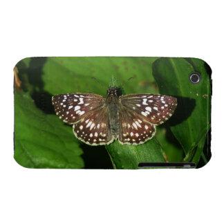 Tropical Checkered Skipper 09/12 iPhone 3 Case-Mate Case