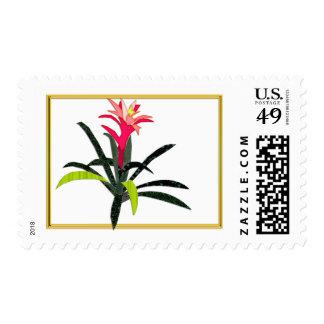 Tropical Christmas Bromeliad Stamps