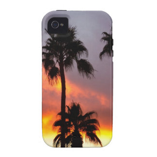 Tropical Colorful Storm iPhone 4 Cover