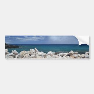 Tropical coral beach bumper sticker