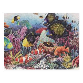 Tropical Coral Fish Dance Postcard