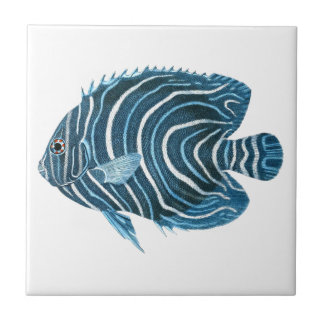 Tropical Coral Reef Fish Tile