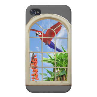 Tropical Delight iPhone 4/4S Cases
