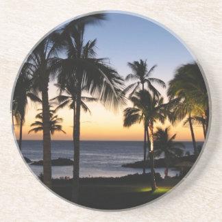 Tropical Destination Coaster
