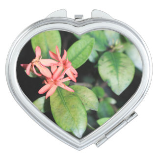 Tropical Exotic Coral Flower, Kew Compact Mirror